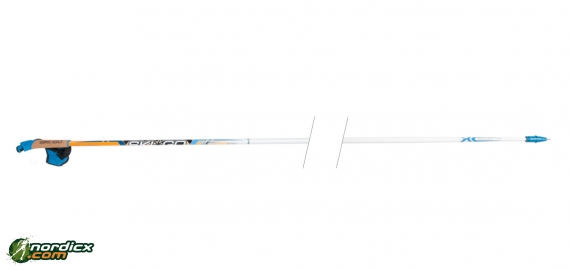 SkiGo Roller 100 (100% Carbon)
