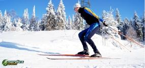 Skilanglauf Skating Kompaktkurs 2x2h